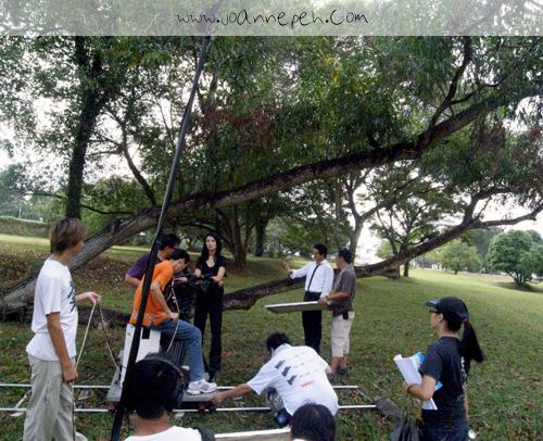 蚂蚁窝就在这棵大树的另一边。